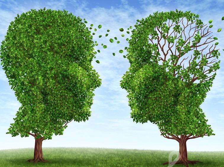 Kognityvinės – elgesio terapijos principų taikymas socialiniame darbe su klientais, turinčiais elgesio ir emocijųsunkumų.